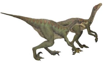 Dinosaurs for Kids: Learn about giant and small dinosaurs