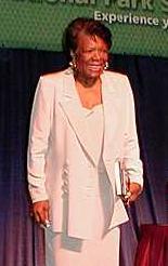 Argumentative Essay On Health Care Reform  Paper Essay also Public Health Essay Biography Maya Angelou Synthesis Essay