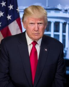 Celebrity apprentice by donald trump