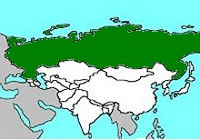 Geography for Kids: Russia on