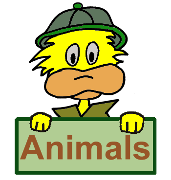 Animals for Kids: Learn about your favorite animal