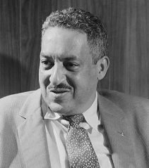 Thurgood Marshall Biography Essay
