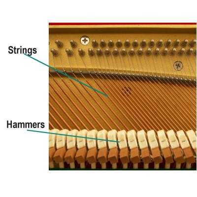 piano_strings_hammers music for kids how the piano works Upright Piano at panicattacktreatment.co