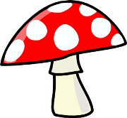 Image result for fungi facts for kids