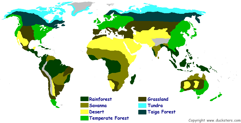 Map of the world biomes