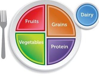 external image nutrition_myplate.jpg