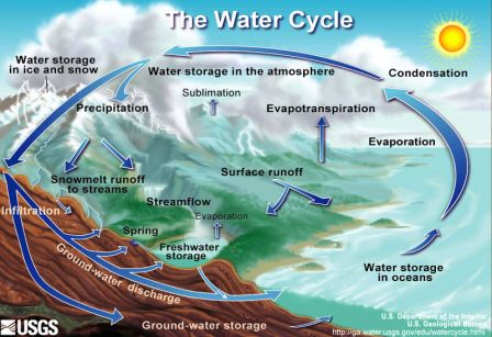 kids science the water cycle eventually this water will evaporate and start the whole cycle again
