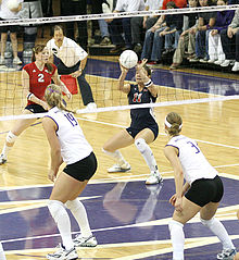 volleyball learn all about player positions